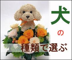 犬の種類で選ぶ犬のプリザーブドフラワーアレンジ