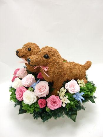 結婚式で愛犬家の両親へプレゼントダックス