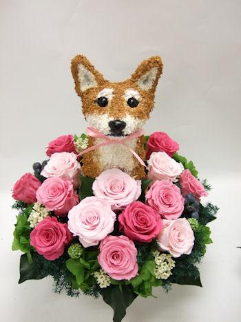 結婚式で愛犬家の両親へプレゼント シバイヌ