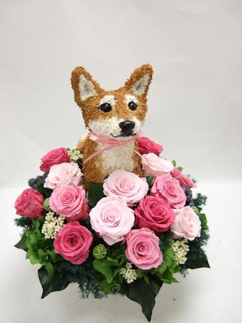 結婚式で愛犬家の両親へプレゼント 柴犬