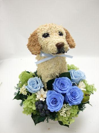 ペットのお悔み、お供え花に犬のトピアリープリザーブドフラワーアレンジ