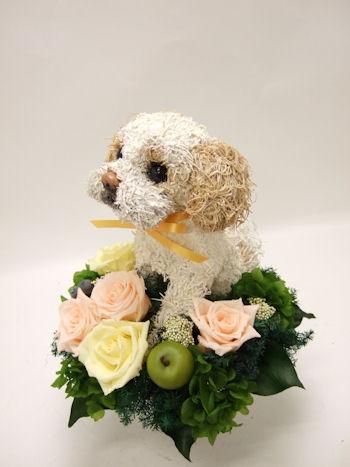 オーダーメイドのシーズー犬のトピアリープリザーブドフラワーアレンジ