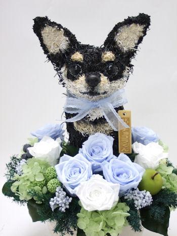 愛犬家の誕生日プレゼント