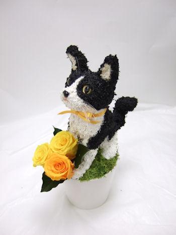 白黒猫のオーダーメイドトピアリープリザーブドフラワーアレンジ