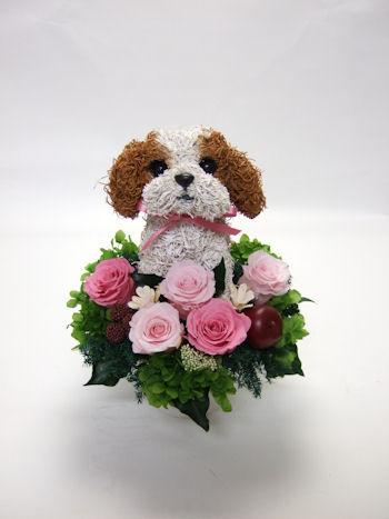 シーズー犬のウェルカムドールエンジェルブーケ