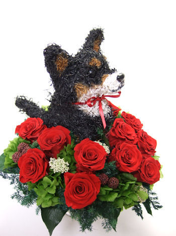 愛犬家誕生日プレゼント