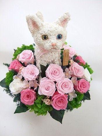 プリザーブドフラワー猫