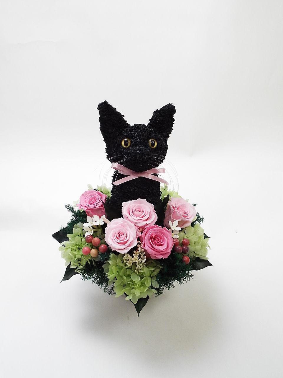 黒猫 フラワーアレンジ