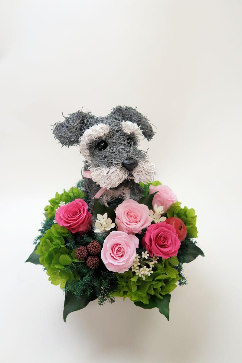 犬好きプレゼント