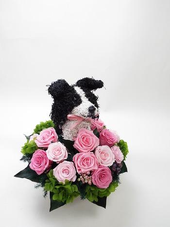 プリザーブドフラワー犬 開店祝い