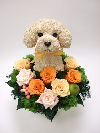トイプードル 花 プレゼント