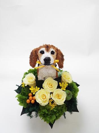 ビーグル 犬プリザーブドフラワー