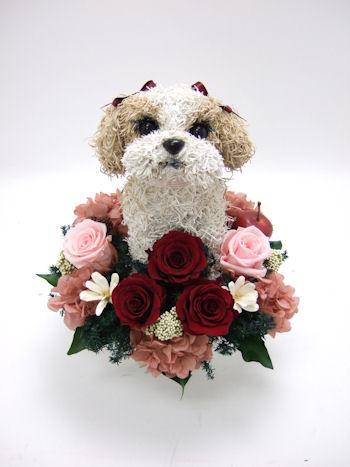 愛犬家へ誕生日プレゼント