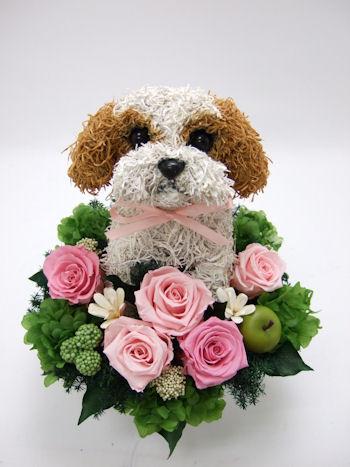 愛犬家へ贈り物