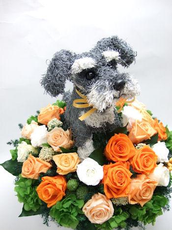ドッグサロン開店祝い 犬のプリザーブドフラワーアレンジ