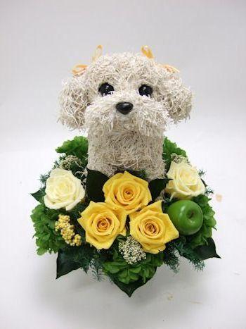 愛犬家の人へ贈り物