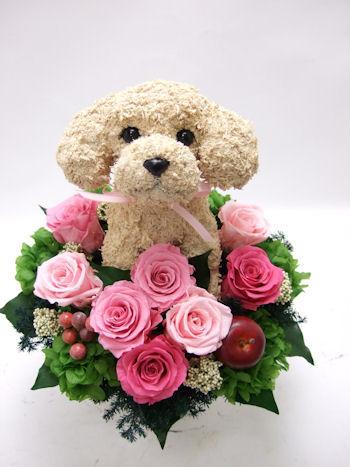 ドッグサロン開店祝いの花
