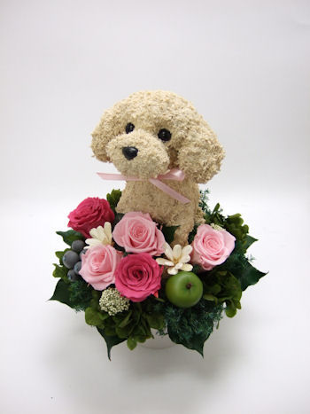 新築祝いに犬の花ギフト