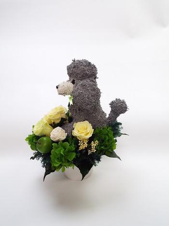 犬のお供え花