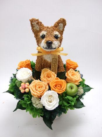 柴犬と花ギフト