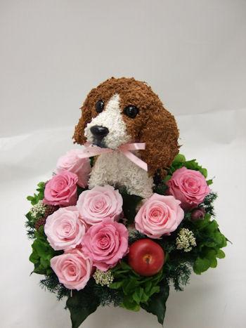犬好きのお母さんへプレゼント