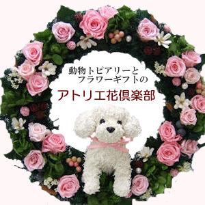 犬猫とフラワーアトリエ花倶楽部