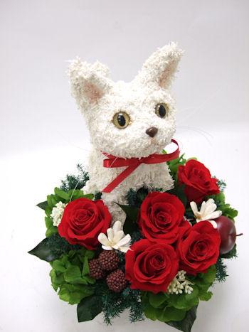 猫の花アレンジメント
