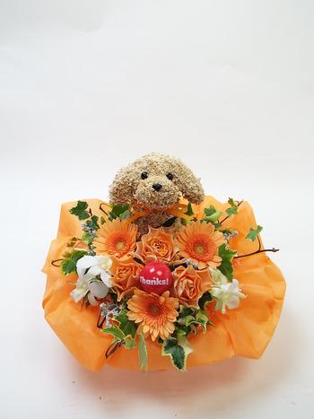 犬フラワーアレンジ