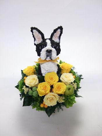 開店祝い 犬 花
