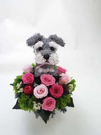 シュナウザー プリザーブドフラワー犬