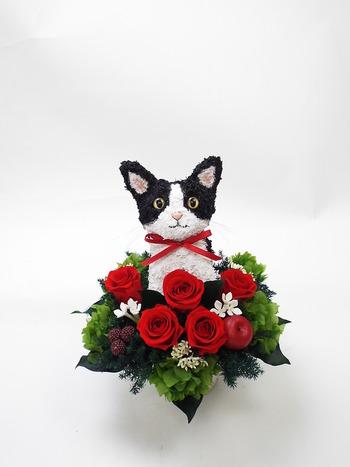 猫好き母へプレゼント