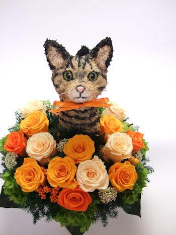 キジトラ猫のトピアリー