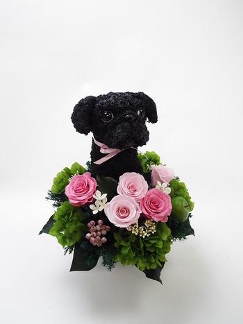 犬 プリザーブドフラワー