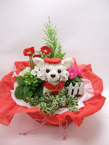 還暦祝い犬の花ギフト