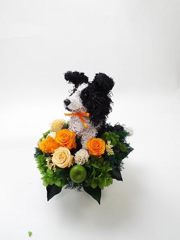 犬好き 誕生日プレゼント