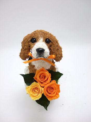 開院祝い 犬の花ギフト