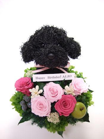 プードルの誕生日プレゼント花