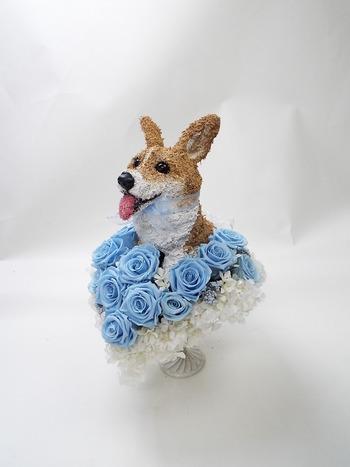 愛犬 オーダーメイド