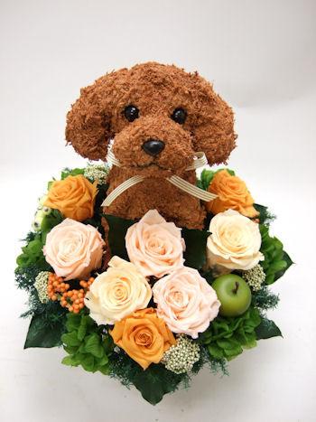 開院祝い犬の花ギフト