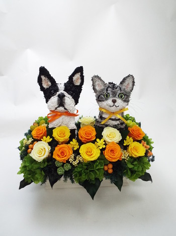 動物病院 開院祝い プリザーブドフラワーアレンジ
