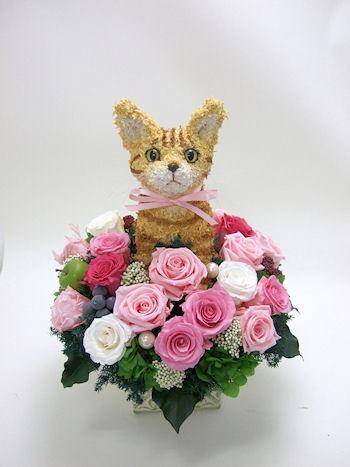 猫好きへの誕生日プレゼント
