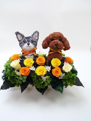 動物病院開院祝い