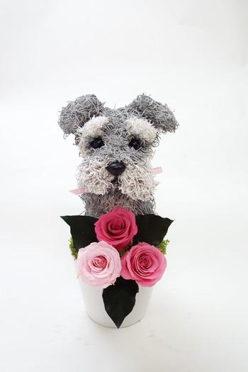 犬好き母へプレゼント 犬花