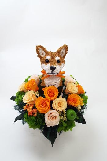 柴犬 プリザーブドフラワーアレンジ