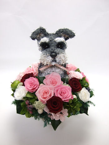 dog flowerarrangement