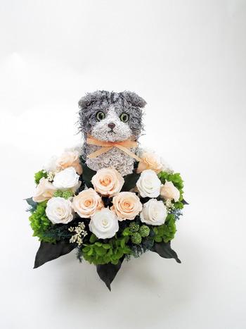 猫好きが喜ぶプレゼント 花
