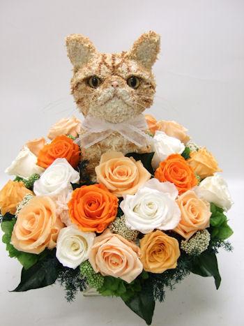 エキゾチック猫トピアリープリザーブドフラワーアレンジ