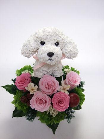愛犬家へ贈り物 花