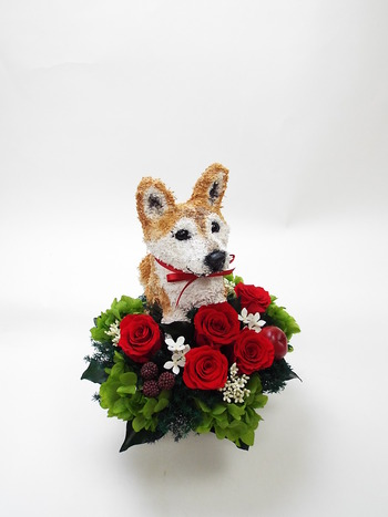 犬好きの人へプレゼント