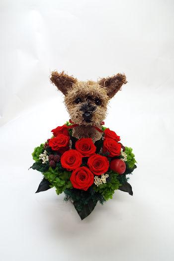 犬好き還暦祝いプレゼント